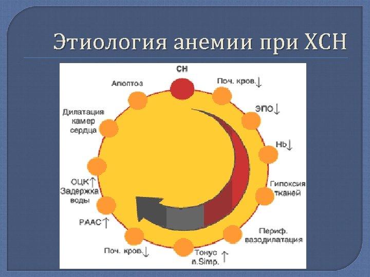 Этиология анемии при ХСН