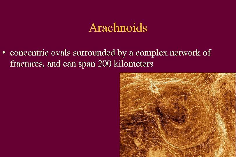 Arachnoids • concentric ovals surrounded by a complex network of fractures, and can span