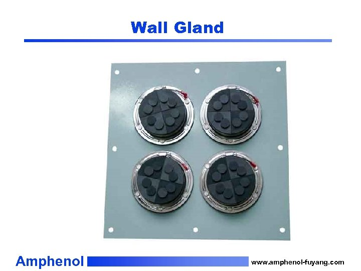 Wall Gland Amphenol www. amphenol-fuyang. com