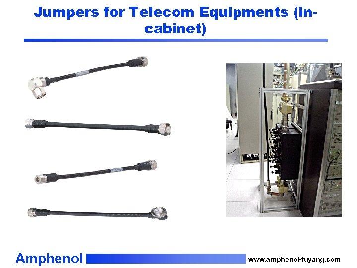 Jumpers for Telecom Equipments (incabinet) Amphenol www. amphenol-fuyang. com
