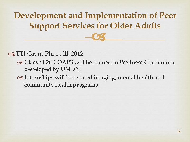 Development and Implementation of Peer Support Services for Older Adults – TTI Grant Phase
