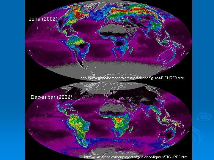 June (2002) http: //www. globalcarbonproject. org/science/figures/FIGURE 9. htm December (2002) http: //www. globalcarbonproject. org/science/figures/FIGURE