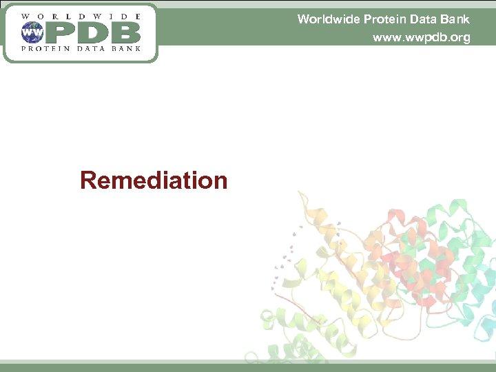 Worldwide Protein Data Bank www. wwpdb. org Remediation