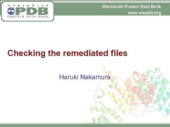 Worldwide Protein Data Bank www. wwpdb. org Checking the remediated files Haruki Nakamura