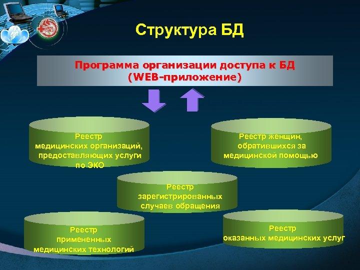 Структура БД Программа организации доступа к БД (WEB-приложение) Реестр медицинских организаций, предоставляющих услуги по