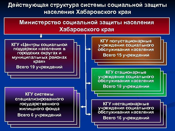 Действующая структура системы социальной защиты населения Хабаровского края Министерство социальной защиты населения Хабаровского края