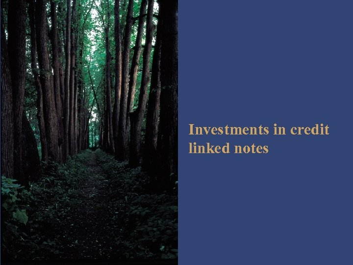 Investments in credit linked notes