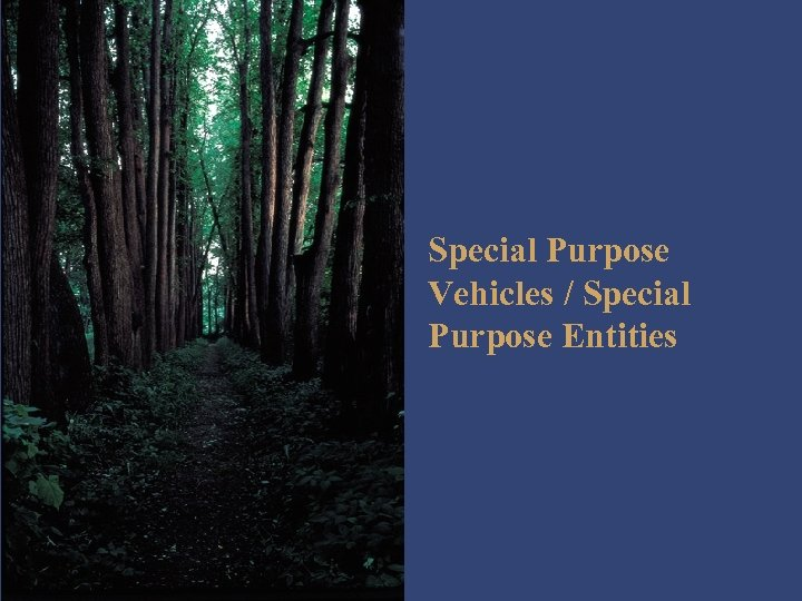 Special Purpose Vehicles / Special Purpose Entities
