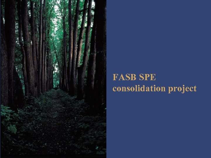 FASB SPE consolidation project