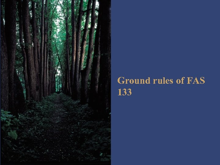 Ground rules of FAS 133