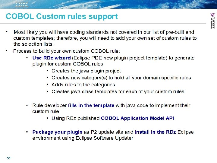 COBOL Custom rules support 57
