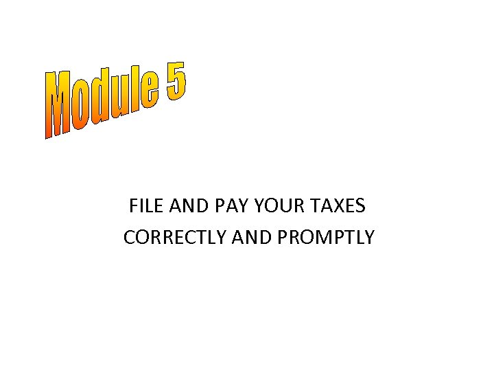 FILE AND PAY YOUR TAXES CORRECTLY AND PROMPTLY