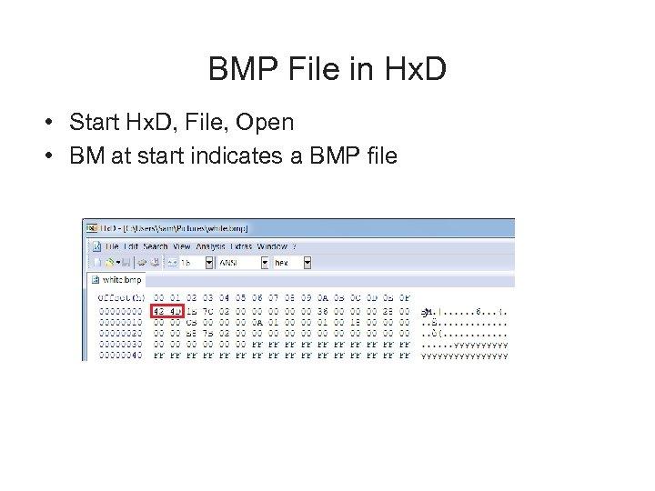 BMP File in Hx. D • Start Hx. D, File, Open • BM at