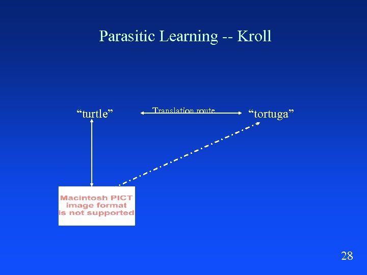 """Parasitic Learning -- Kroll """"turtle"""" Translation route """"tortuga"""" 28"""