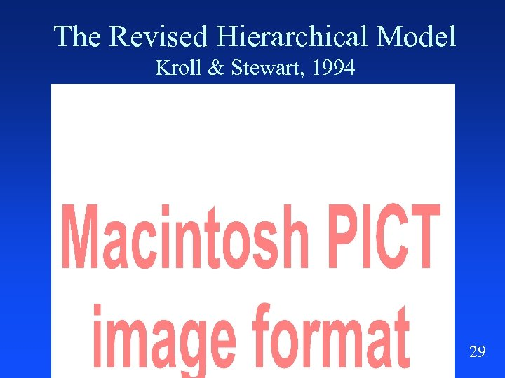 The Revised Hierarchical Model Kroll & Stewart, 1994 29