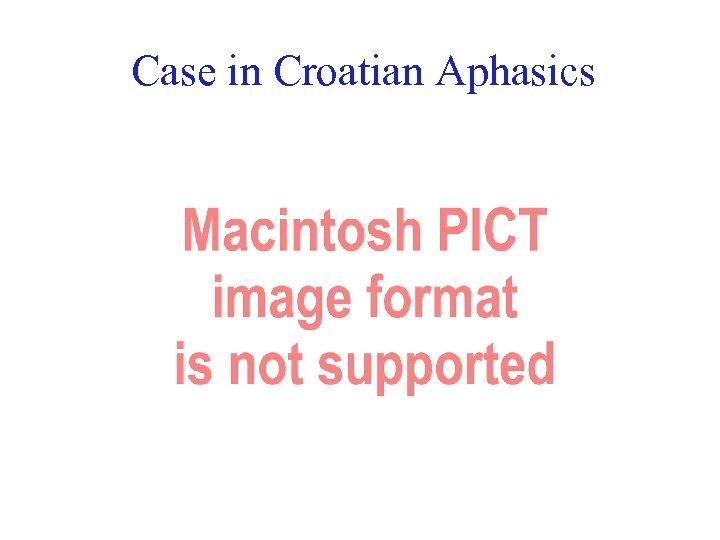 Case in Croatian Aphasics 43