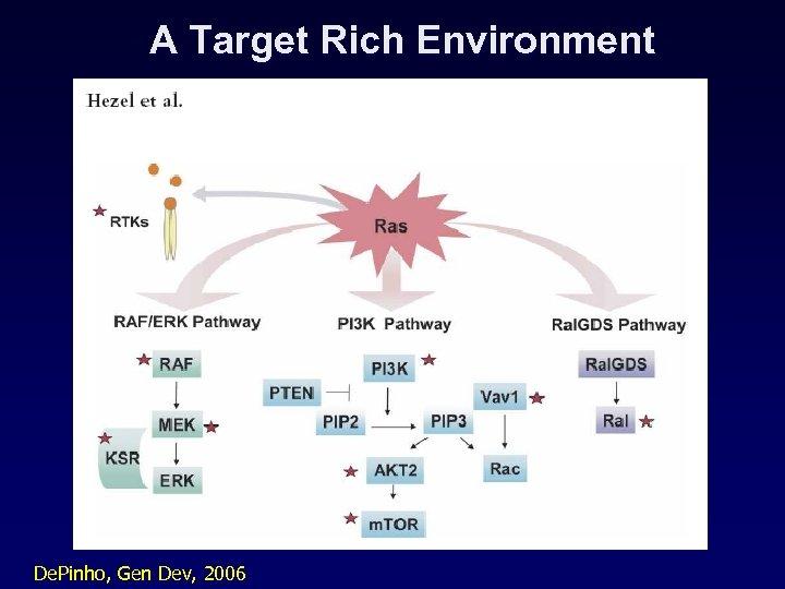 A Target Rich Environment De. Pinho, Gen Dev, 2006