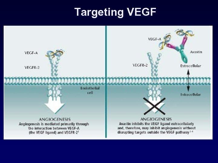 Targeting VEGF