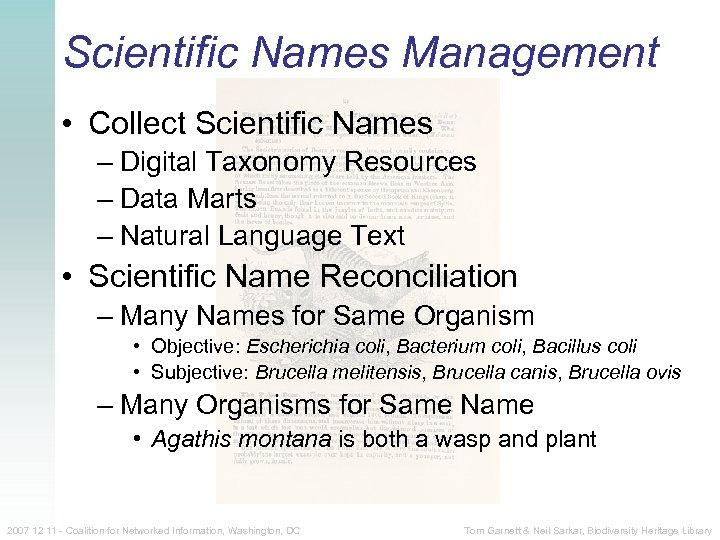 Scientific Names Management • Collect Scientific Names – Digital Taxonomy Resources – Data Marts