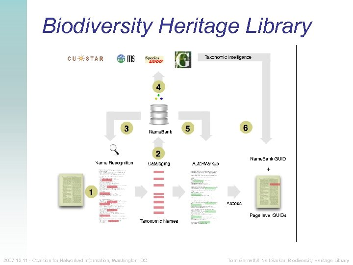 Biodiversity Heritage Library 2007 12 11 - Coalition for Networked Information, Washington, DC Tom