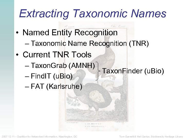 Extracting Taxonomic Names • Named Entity Recognition – Taxonomic Name Recognition (TNR) • Current