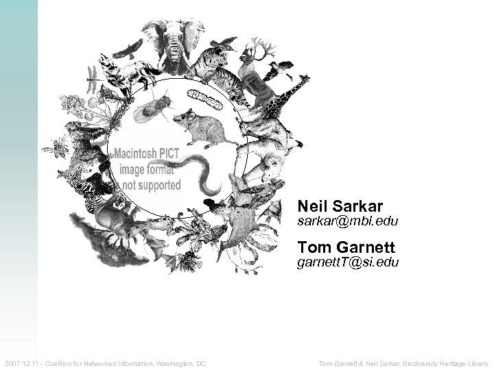Neil Sarkar sarkar@mbl. edu Tom Garnett garnett. T@si. edu 2007 12 11 - Coalition
