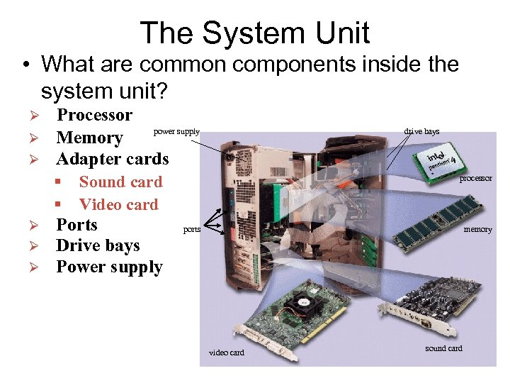 The System Unit • What are common components inside the system unit? Ø Ø
