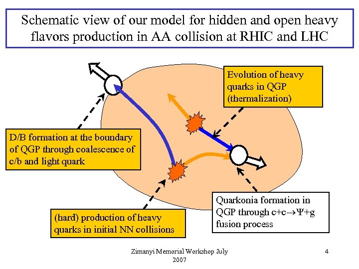 Schematic view of our model for hidden and open heavy flavors production in AA