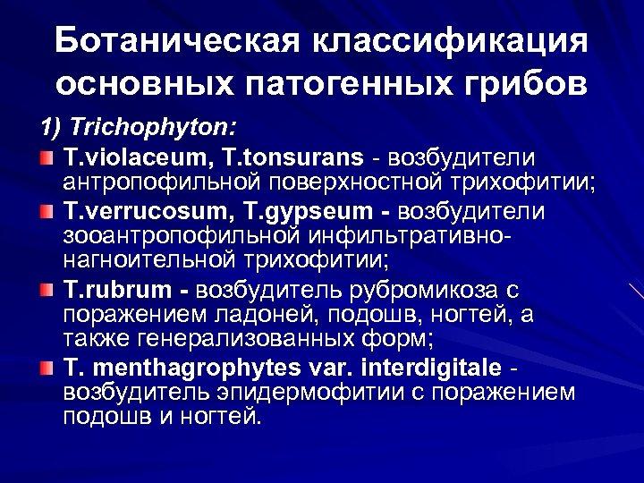 Ботаническая классификация основных патогенных грибов 1) Trichophyton: T. violaceum, T. tonsurans - возбудители антропофильной