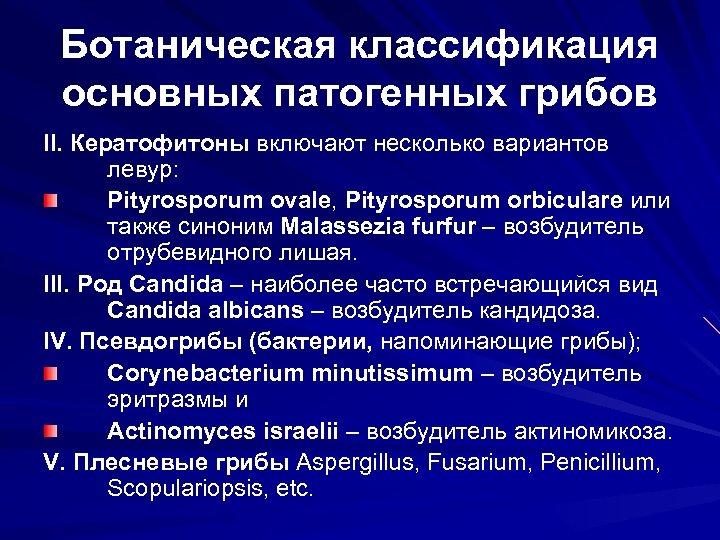 Ботаническая классификация основных патогенных грибов II. Кератофитоны включают несколько вариантов левур: Pityrosporum ovale, Pityrosporum