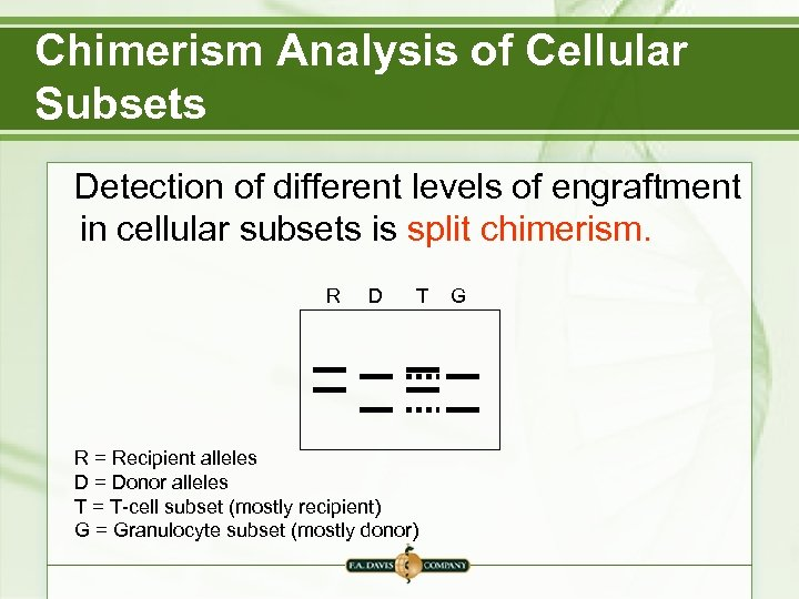 Chimerism Analysis of Cellular Subsets Detection of different levels of engraftment in cellular subsets