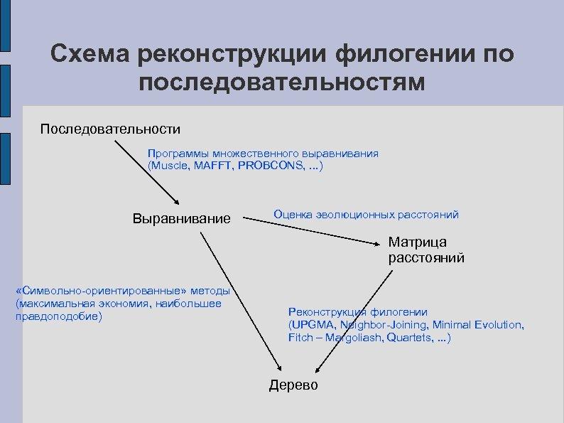 Схема реконструкции филогении по последовательностям Последовательности Программы множественного выравнивания (Muscle, MAFFT, PROBCONS, . .