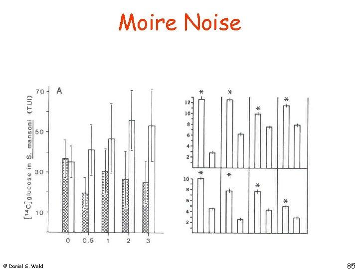 Moire Noise © Daniel S. Weld 85