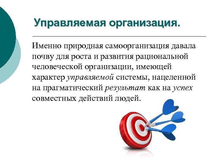 Управляемая организация. Именно природная самоорганизация давала почву для роста и развития рациональной человеческой организации,