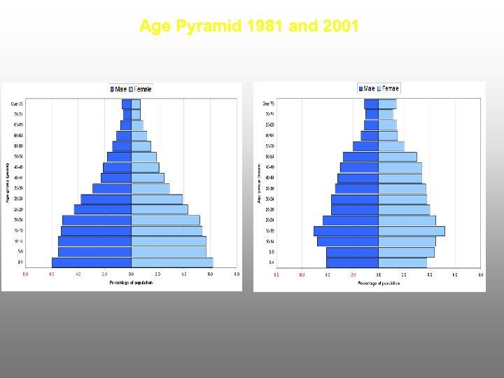 Age Pyramid 1981 and 2001
