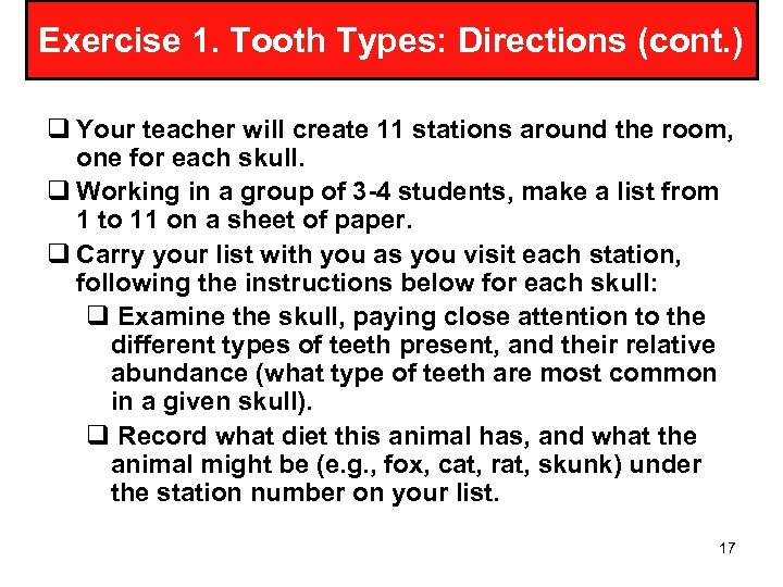 Exercise 1. Tooth Types: Directions (cont. ) q Your teacher will create 11 stations