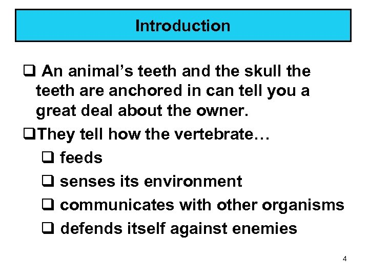 Introduction q An animal's teeth and the skull the teeth are anchored in can
