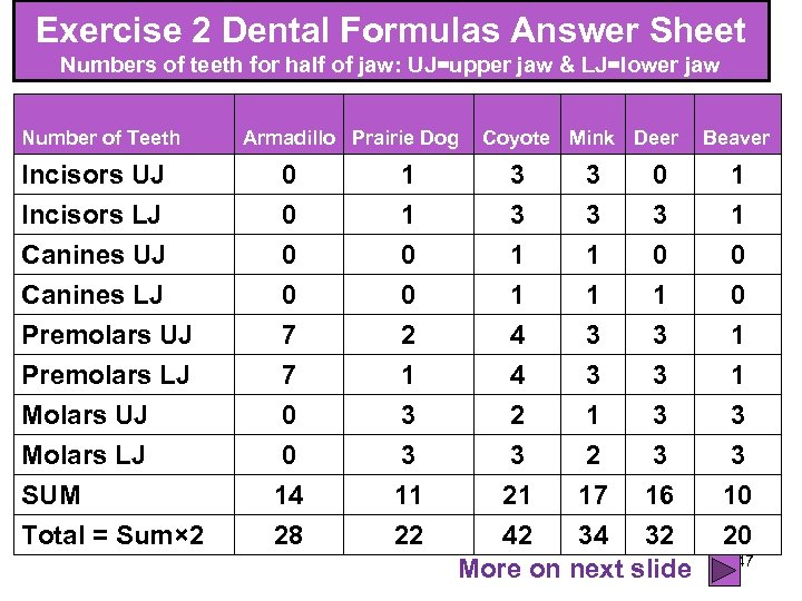 Exercise 2 Dental Formulas Answer Sheet Numbers of teeth for half of jaw: UJ=upper