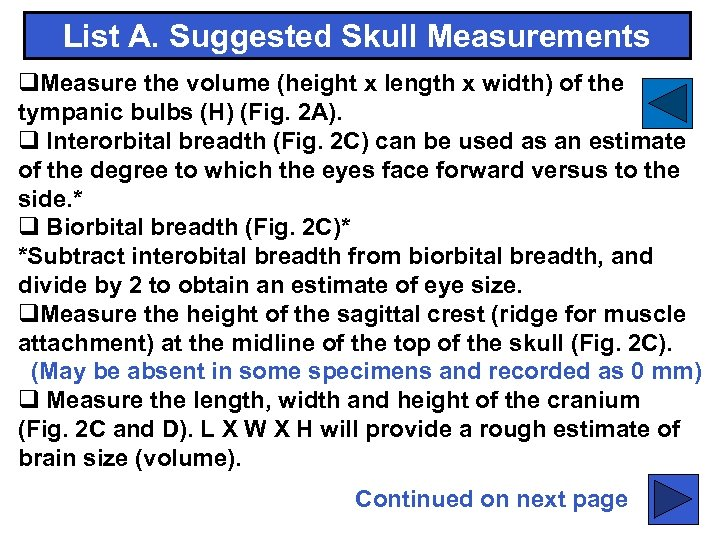 List A. Suggested Skull Measurements q. Measure the volume (height x length x width)