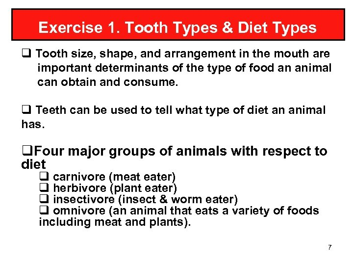 Exercise 1. Tooth Types & Diet Types q Tooth size, shape, and arrangement in
