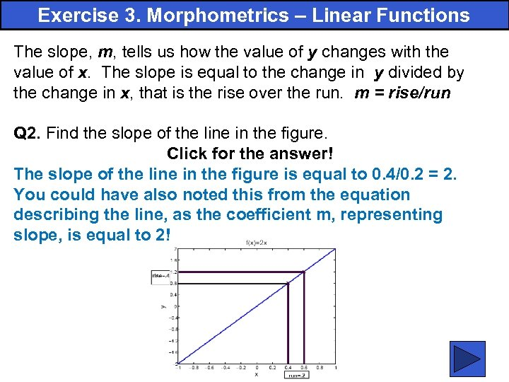 Exercise 3. Morphometrics – Linear Functions The slope, m, tells us how the value