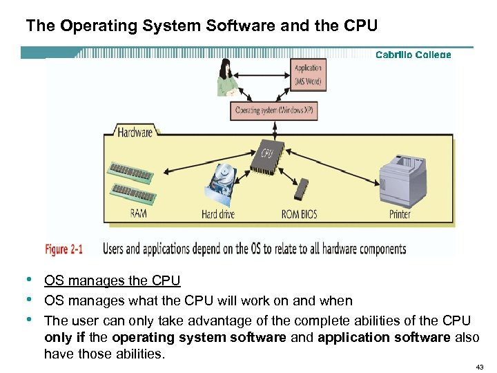 The Operating System Software and the CPU • • • OS manages the CPU