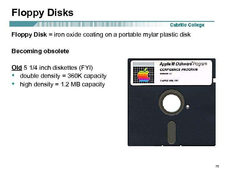 Floppy Disks Floppy Disk = iron oxide coating on a portable mylar plastic disk