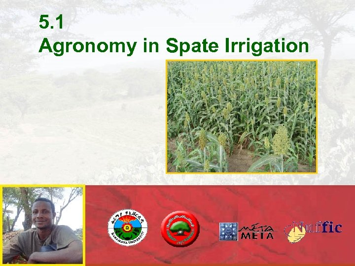 5. 1 Agronomy in Spate Irrigation