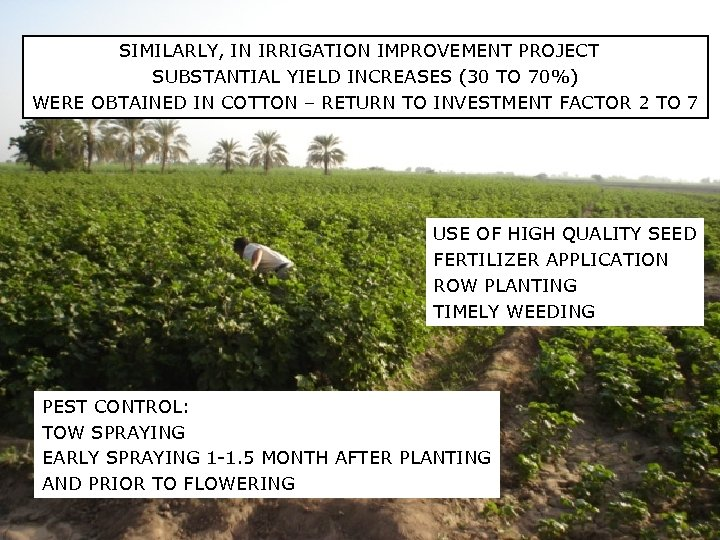 SIMILARLY, IN IRRIGATION IMPROVEMENT PROJECT SUBSTANTIAL YIELD INCREASES (30 TO 70%) WERE OBTAINED IN