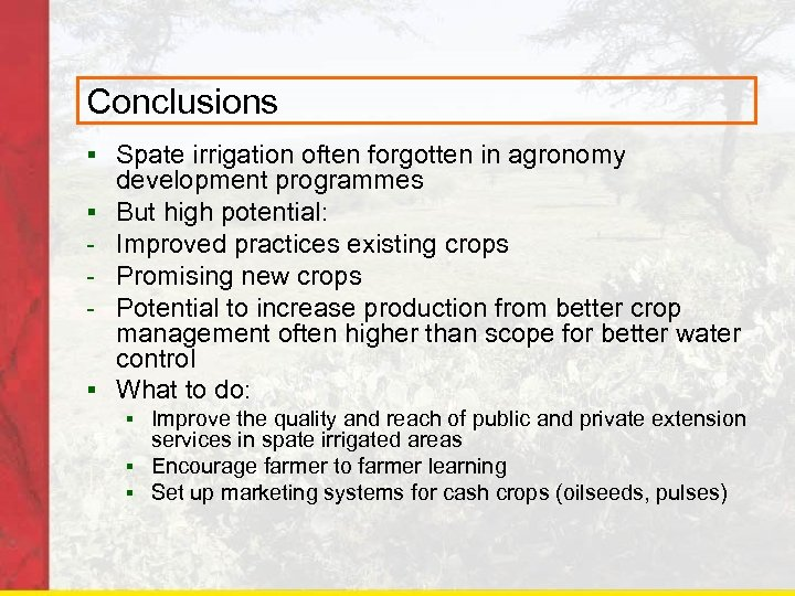 Conclusions § Spate irrigation often forgotten in agronomy § § development programmes But high