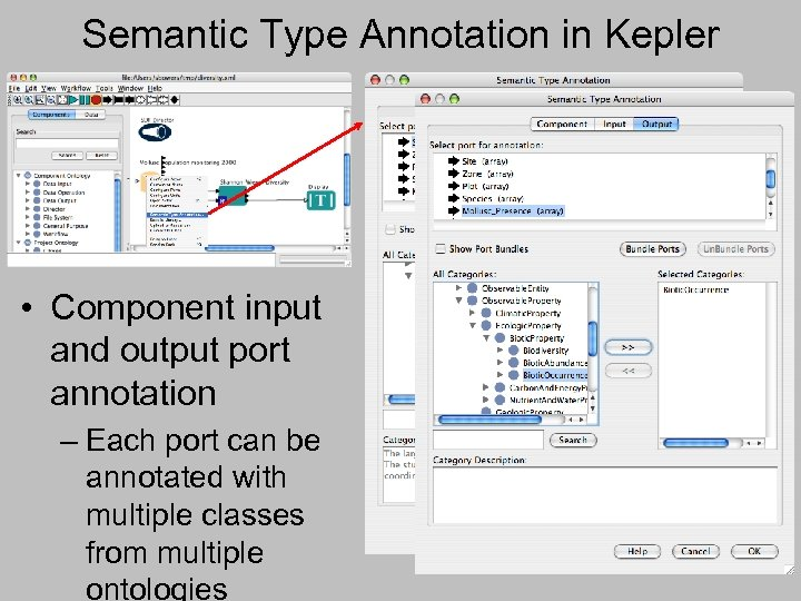 Semantic Type Annotation in Kepler • Component input and output port annotation – Each