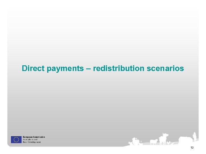 Direct payments – redistribution scenarios 13