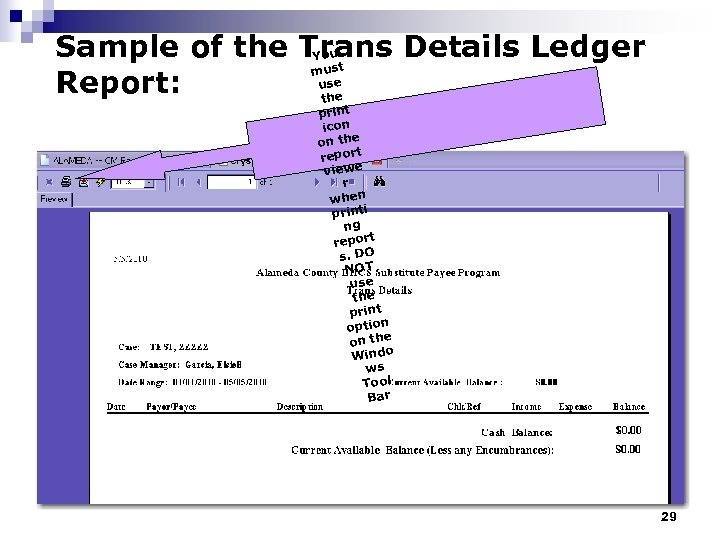 Sample of the Trans Details Ledger You must use Report: the print icon on