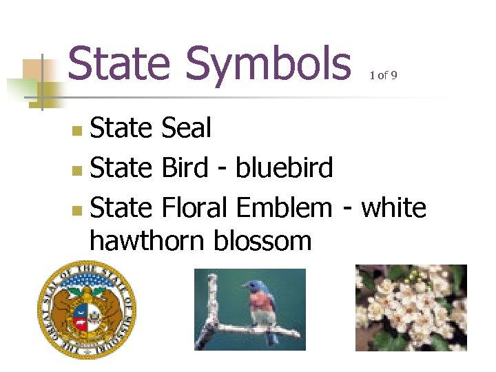 State Symbols 1 of 9 State Seal n State Bird - bluebird n State